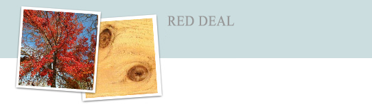 Red Deal Doors